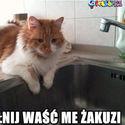 jakuzzi