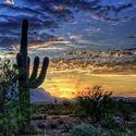 Pustynia Sonora, Arizona.