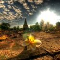 prowincja chiang mai tajlandia