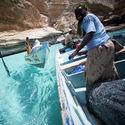 rybacy z socotry jemen