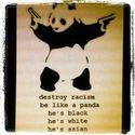 niszcz rasizm,badz  jak panda