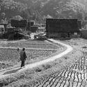 japonia prowincja ok 1950
