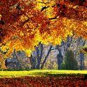 Jesiennie