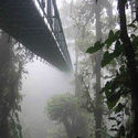 Klimatyczny most