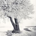 Piękna strona zimy