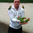 Z ptakami