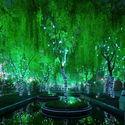 magiczny las - Shanghai, Chiny