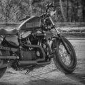 Harley Dawidson