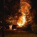 płonie ognisko i szumią knieje