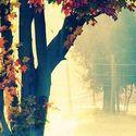 Jesiennie.