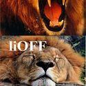 liON / liOFF