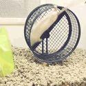 Zepsuta mysz