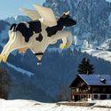 Tymczasem nad Alpami.