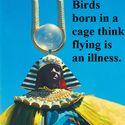 Ptaki urodzone w klatce myślą, że latanie to choroba
