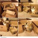 Kontroler jakości pudełek
