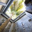 łazienka z palmą