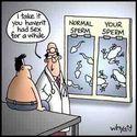 frog sperm?