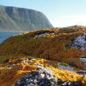 Norwegia, Alesund