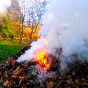 ,, Jestem obca. Zrodzona z ognia i opadających liści...