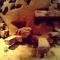 Budowa ścianki dla Gekona Lamparciego (część ostatnia)