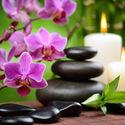 Qigong – Kule zdrowia. Co i jak.