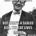 Fizyka i koty