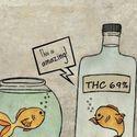 Jak ryba w wodzie ;D