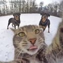 Uwaga chłopy, robię selfie