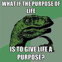 sens życia