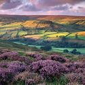 Rosedale, North Yorkshire, Anglia.