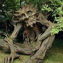troll tree