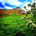Góra Króla Artura (Arthur's Seat) - Zwiedzamy Szkocję cz.2