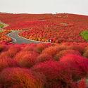 Park Hitachi, Japonia