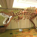 balonowy t-rex