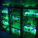 Mała kolekcja przedmiotów z domieszką uranu