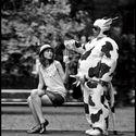 Człowiek krowa