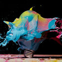 High Speed Photographs of Exploding Lightbulbs Filled with Object