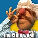 Invisible weed
