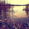 Lato nakurwiaj ! ;)