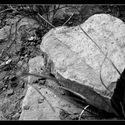 Serce z kamienia..