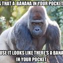 Czy ty czasem nie masz banana w kieszeni?