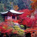 Piękna Japonia, Nachi Falls, Wakayama