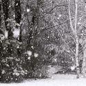 Zima na wstecznym