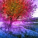 Psytree