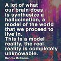 a model reality
