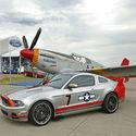 Mustang & Mustang :)