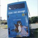 Ride The Beaver