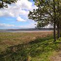 Zatoka Cromarty Firty w Dingwall - Scotland (odpływ)