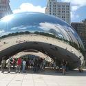 silver bean