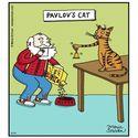 Kot Pawłowa